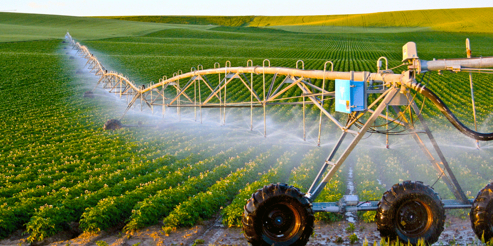Best-time-for-irrigation