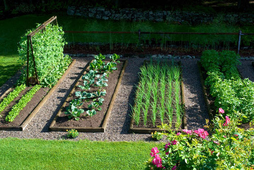 the-raised-bed-vegetable-garden-at-distant-hill-gardens
